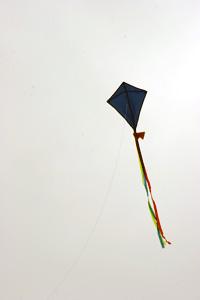 blue_kite_7597