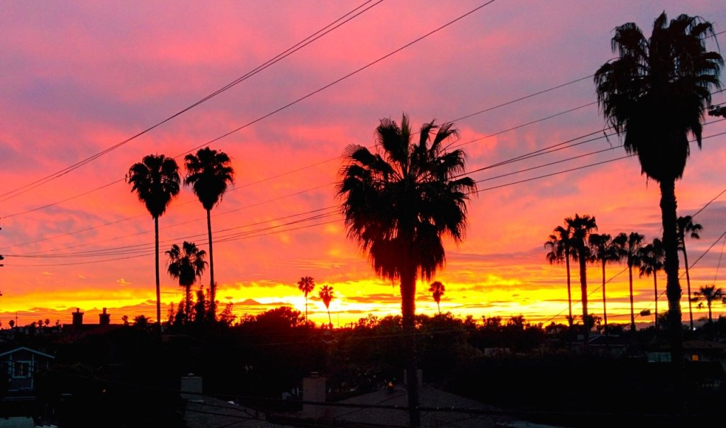 Spring Sunset over the Pacific Coastline Venice CA