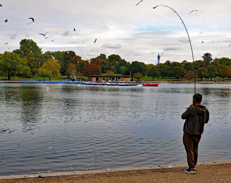 A fisherman at the one spot at the Serpentine where fishing is allowed.
