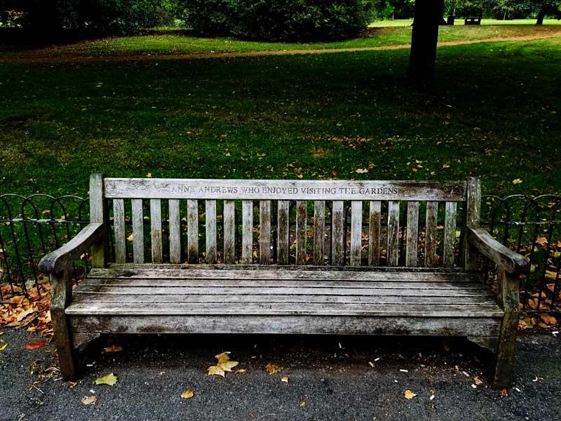 Anne Andrews bench in Hude Park.