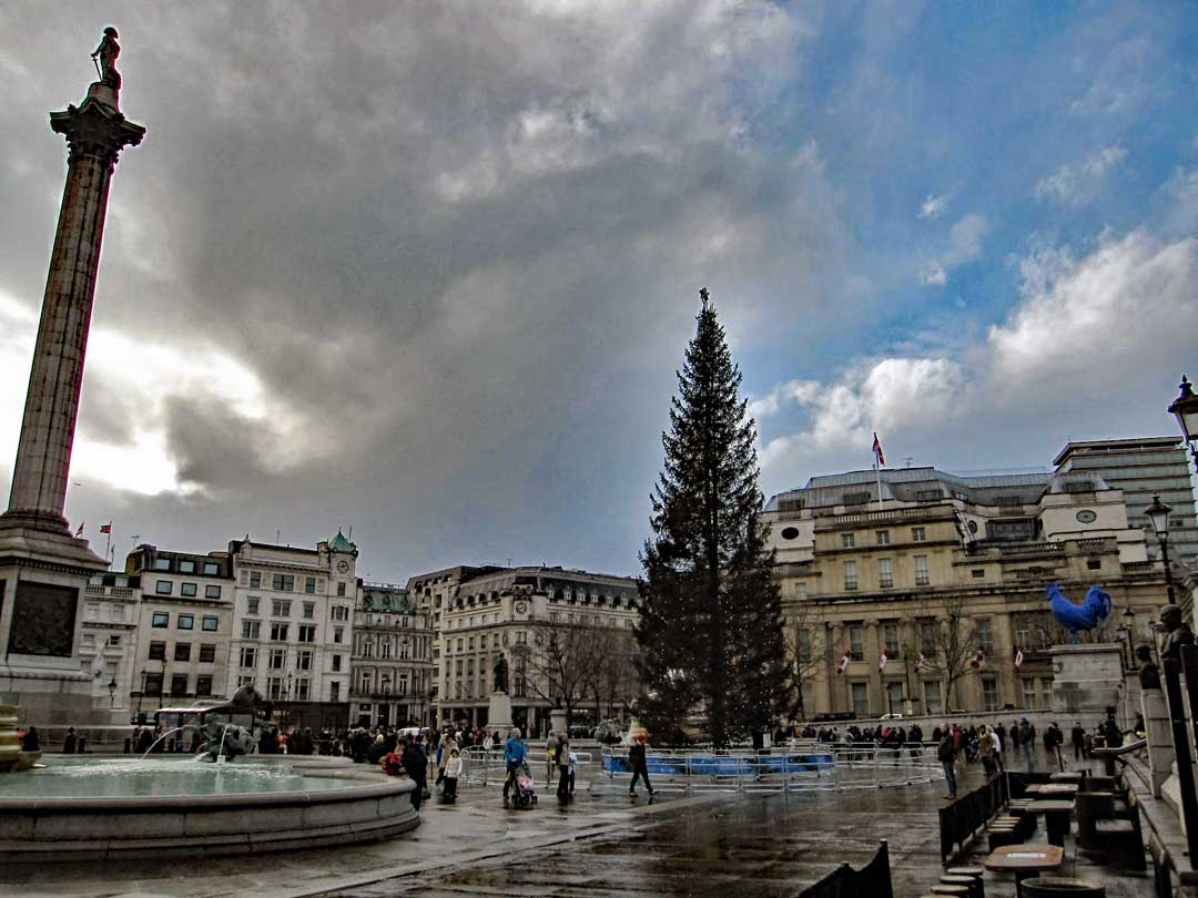 The Christmas tree that is donated to the City of London each year by the country of Norway as a thank you for their support during WWII. This one is from 2013.