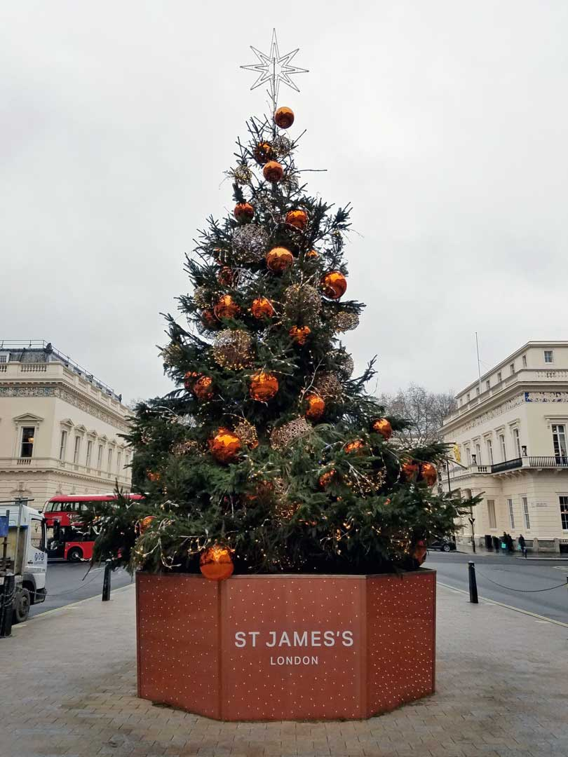 Another London tree at St James's Place.