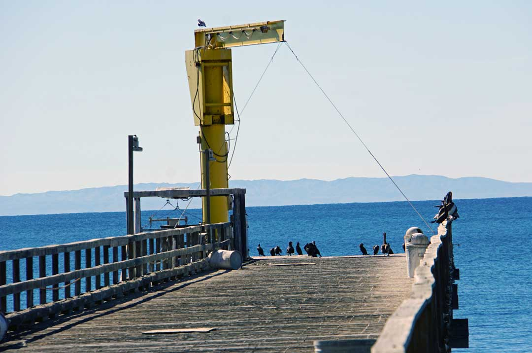 Boat launch crane at the end of the pier - now it's for the birds...