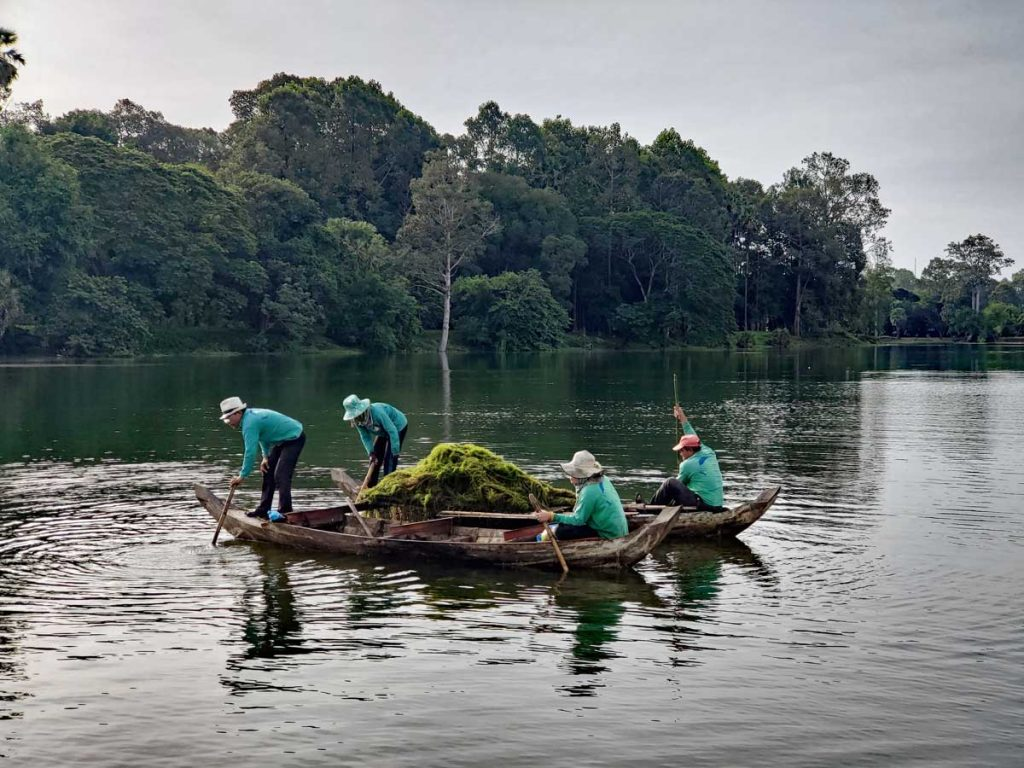 A crew clearing out vegetation in the moat surrounding Angkor Wat.